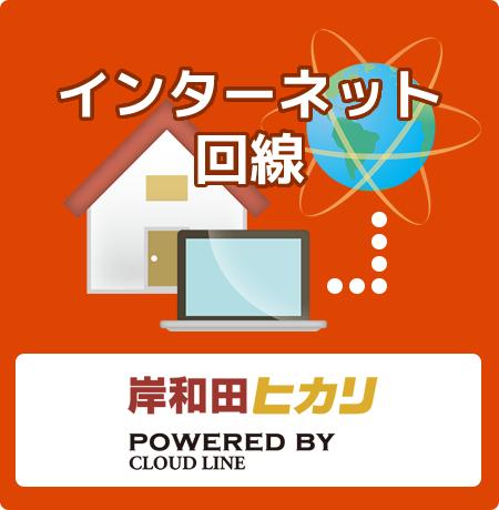 岸和田ヒカリ(インターネット回線)